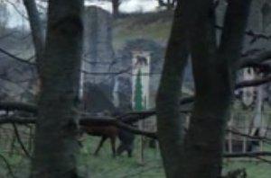 File:House Mormont banner.jpg