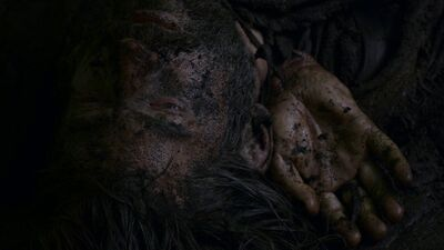 Jaime beaten