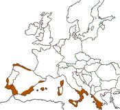 EU Hardiness 10 to 10