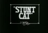 StuntCat