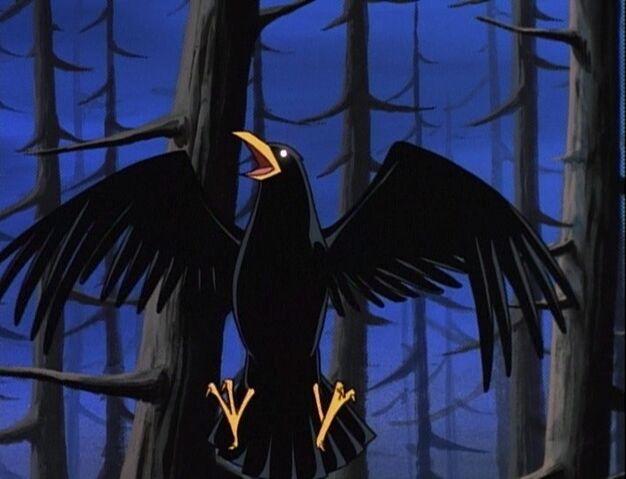 File:Bird Raven.jpg
