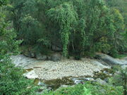 Keeriparai - Forest Stream