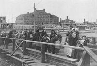 Ellis island 1902