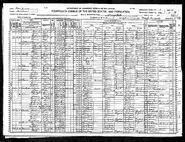 1920 census KahrarPolling