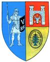 Actual Alba county CoA.png