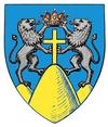Actual Suceava county CoA.png