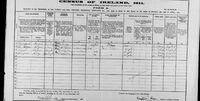 1911 census Conboy Hogan Ireland