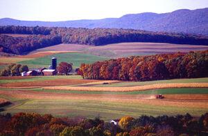 Farming near Klingerstown, Pennsylvania