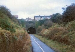 Old railway, above where George Burgess was born in 1829, now cycle track, Staple Hll, Bristol