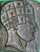 Wooden Head used by George Burgess