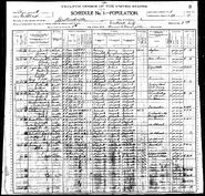 1900 census Lowe Lindauer