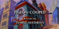 Pigeon-Cooped