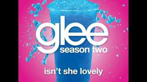 Isn't She Lovely (Acapella) - Glee Cast