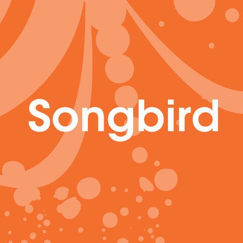 File:Quiz1-songbird.jpg