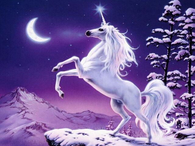 File:Unicorn3.jpg