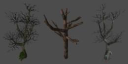 Object dead big tree