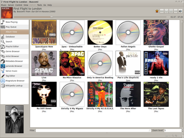 File:11 album view.png