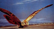 Mothra showa 09