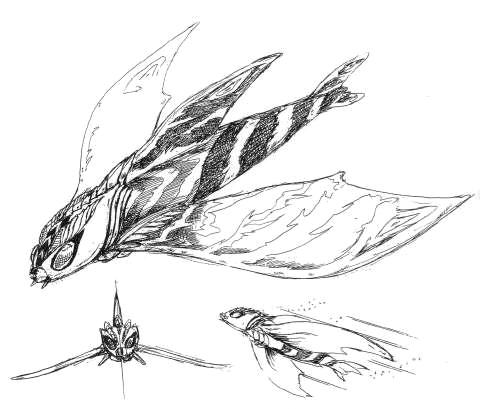 File:Concept Art - Rebirth of Mothra 2 - Aqua Mothra 6.png