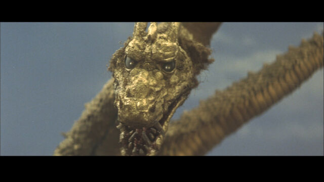 File:ShodaiGhido head close-up.jpg