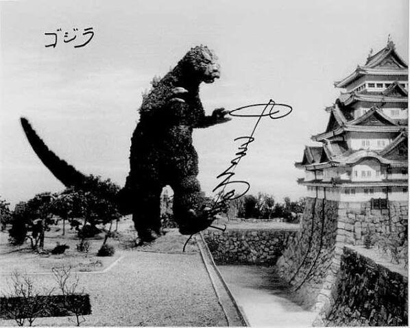 File:NakajimaMvsG.jpg