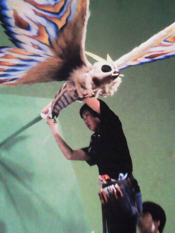 File:Eternal Mothra 2.jpg