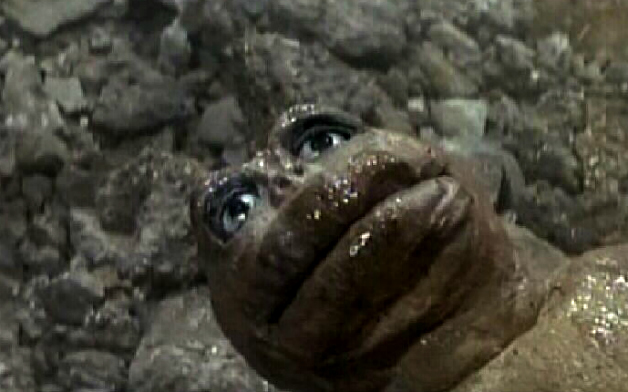 File:NEWBORN MINILLA IS TIRED OF YOUR SHIRT.jpg