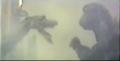 Godzilla vs Manda