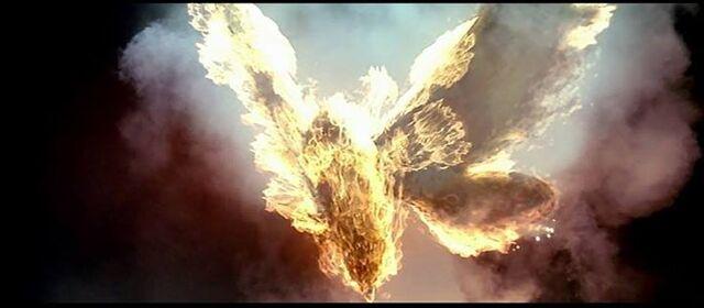 File:Mothra is being Burned.jpg