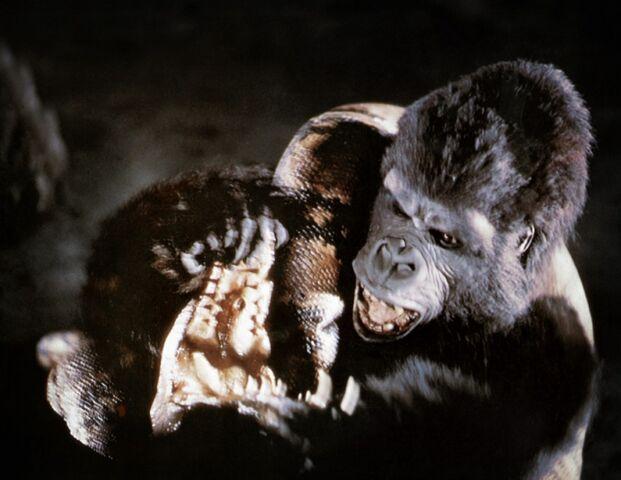 File:King Kong Breaking Giant Boa's Jaw.jpg