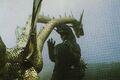 GVKG - King Ghidorah Approaching Godzilla