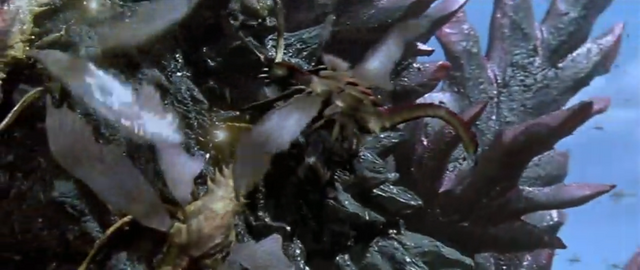 File:Godzilla vs. Megaguirus - Godzilla has his dorsal plates swarmed.png