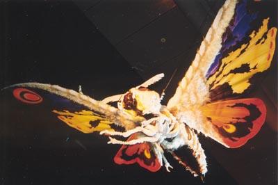 File:Suit Museum - SokogekiMosuImago.jpg