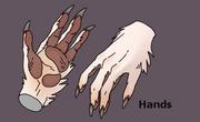 Sergal paws