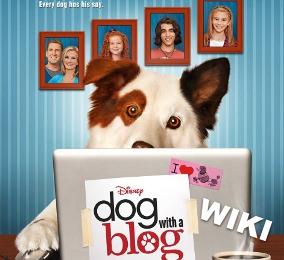 DogWithABlogWiki