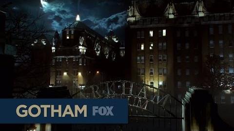 GOTHAM FOX Monday