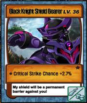 Lvl 36 - Black Knight Shield Bearer
