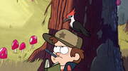 S1e1 woodpecker on dipper's head