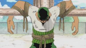 Zoro tied up