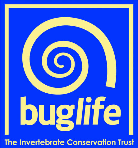 File:Buglife.jpg