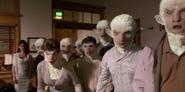 205 - The flock attacks to Reverend Calvin