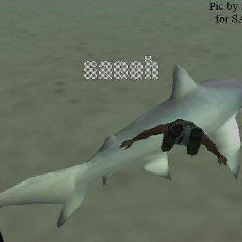 Shark in GTA SA