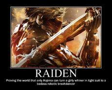RAIDEN-FunnyPoster