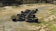 North Point Fit Trail GTAV Obstacle 9