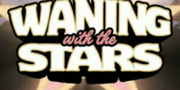 WaningwiththeStars-GTAIV