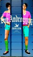 Swallow-GTAV-Banner
