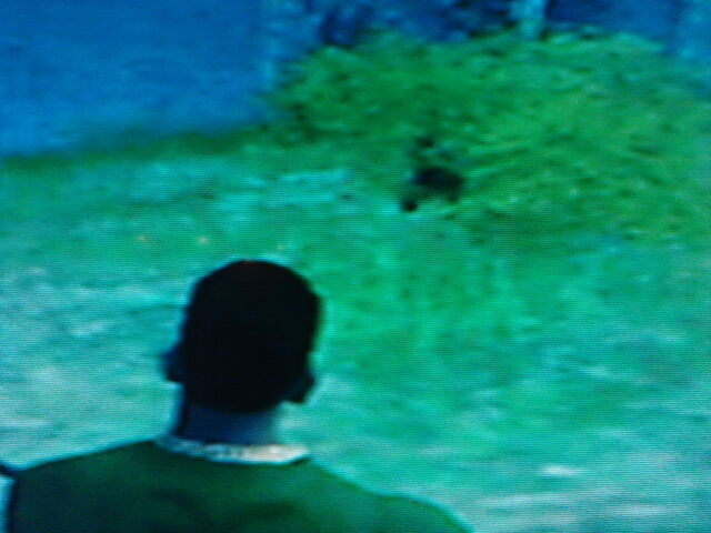 File:GTA SA Bigfoot (Closer).jpg