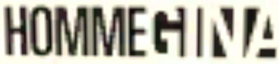 File:HommeGina-GTAV-Logo.jpg