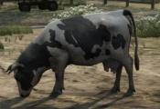 Cow-GTAV-black&white