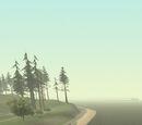Martin Bridge